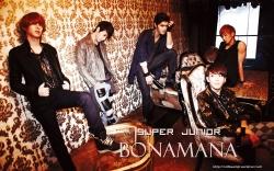 SJ_Bonamana_HDSRL