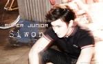 SJ_Bonamana_Siwon